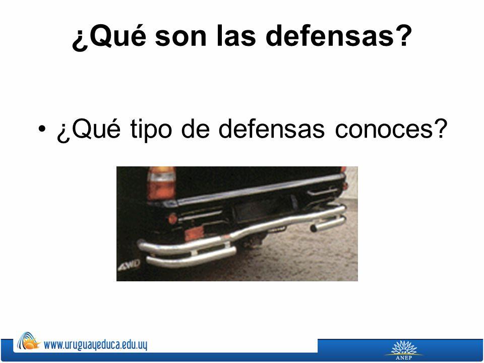 ¿Qué son las defensas ¿Qué tipo de defensas conoces