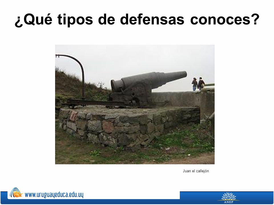 ¿Qué tipos de defensas conoces