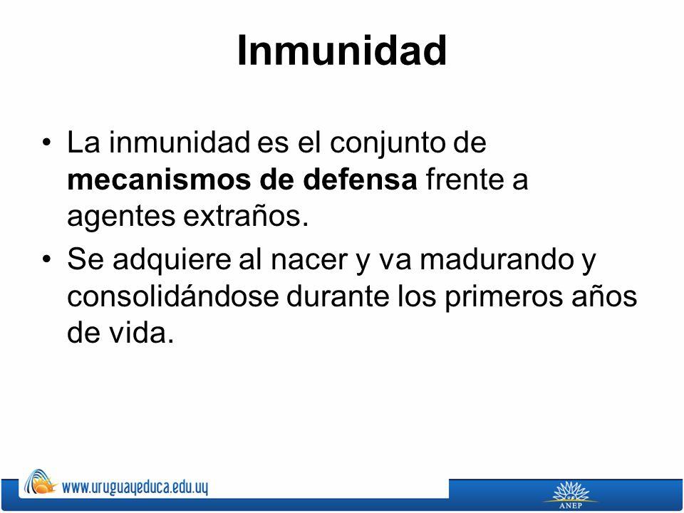 Inmunidad La inmunidad es el conjunto de mecanismos de defensa frente a agentes extraños.