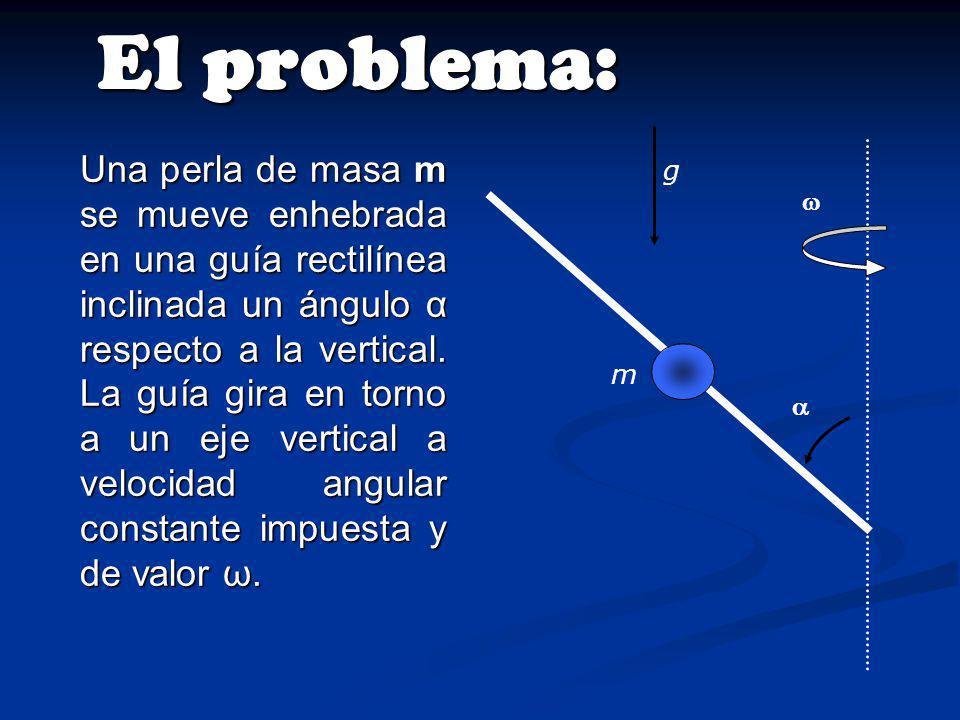 El problema: m.   g.