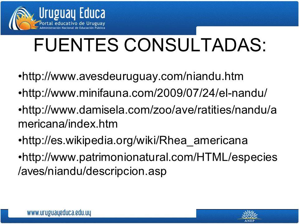 FUENTES CONSULTADAS: http://www.avesdeuruguay.com/niandu.htm