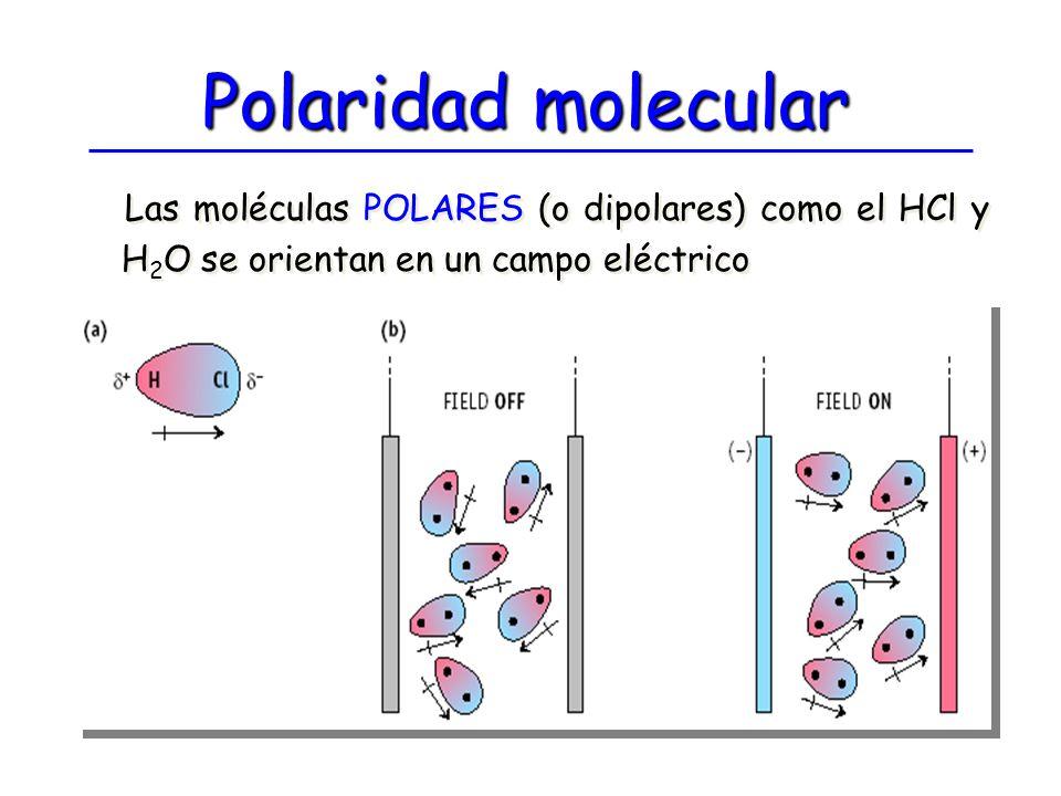 Polaridad molecular Las moléculas POLARES (o dipolares) como el HCl y H2O se orientan en un campo eléctrico.