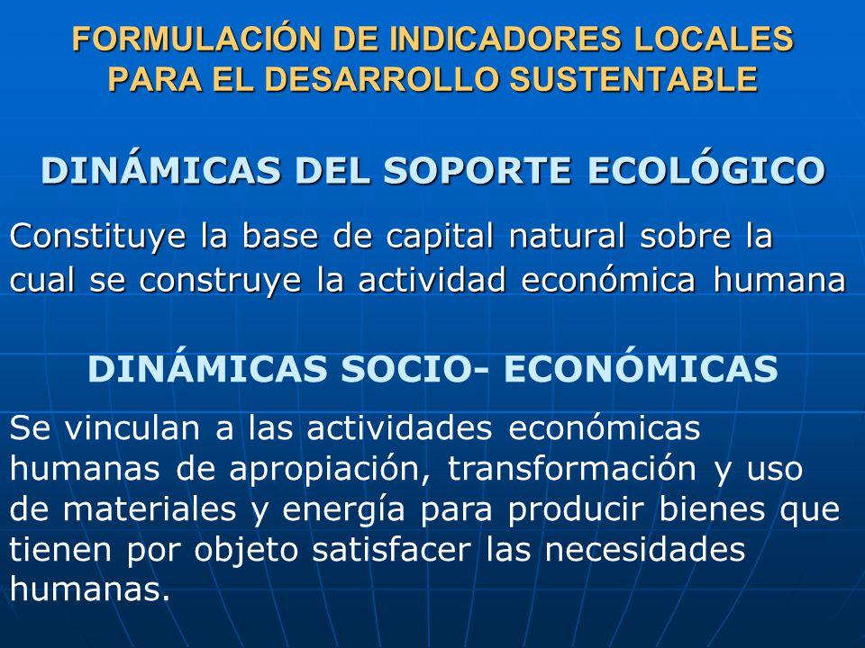 FORMULACIÓN DE INDICADORES LOCALES PARA EL DESARROLLO SUSTENTABLE