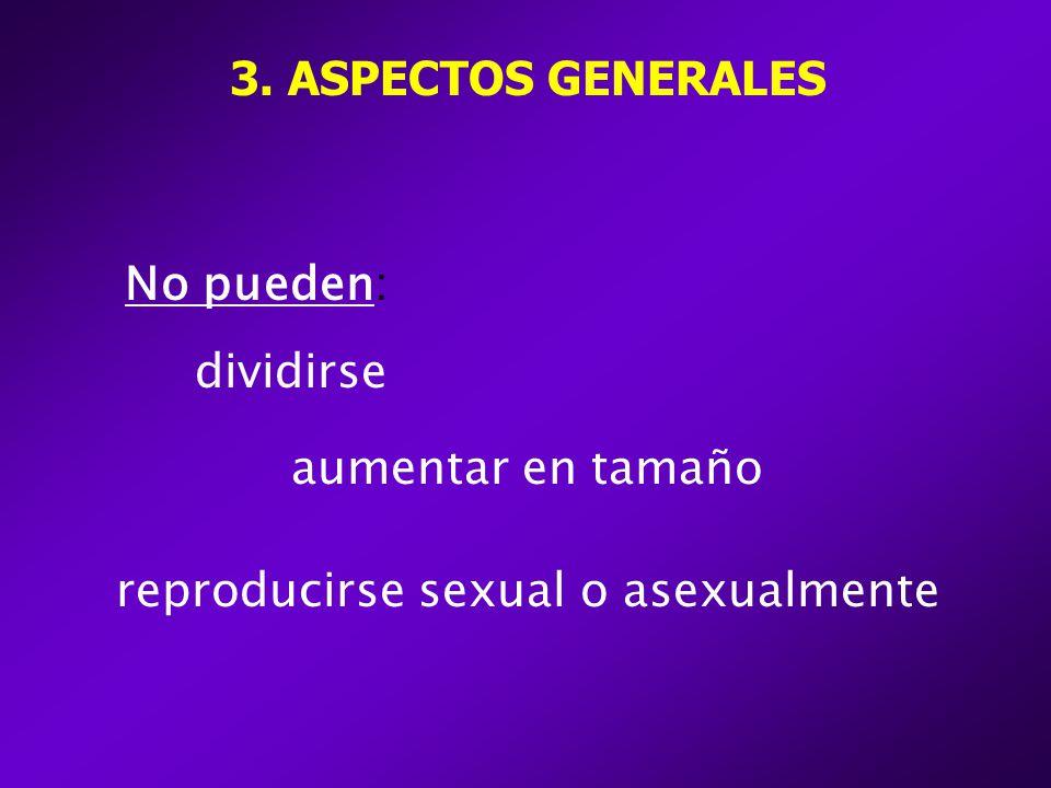 3. ASPECTOS GENERALES No pueden: dividirse aumentar en tamaño reproducirse sexual o asexualmente