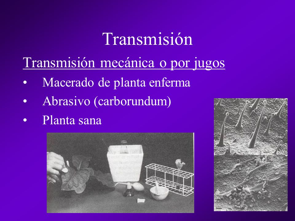 Transmisión Transmisión mecánica o por jugos