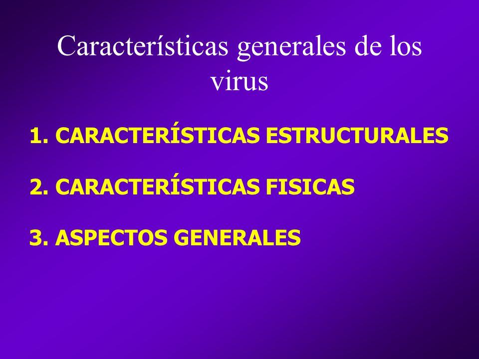 Características generales de los virus