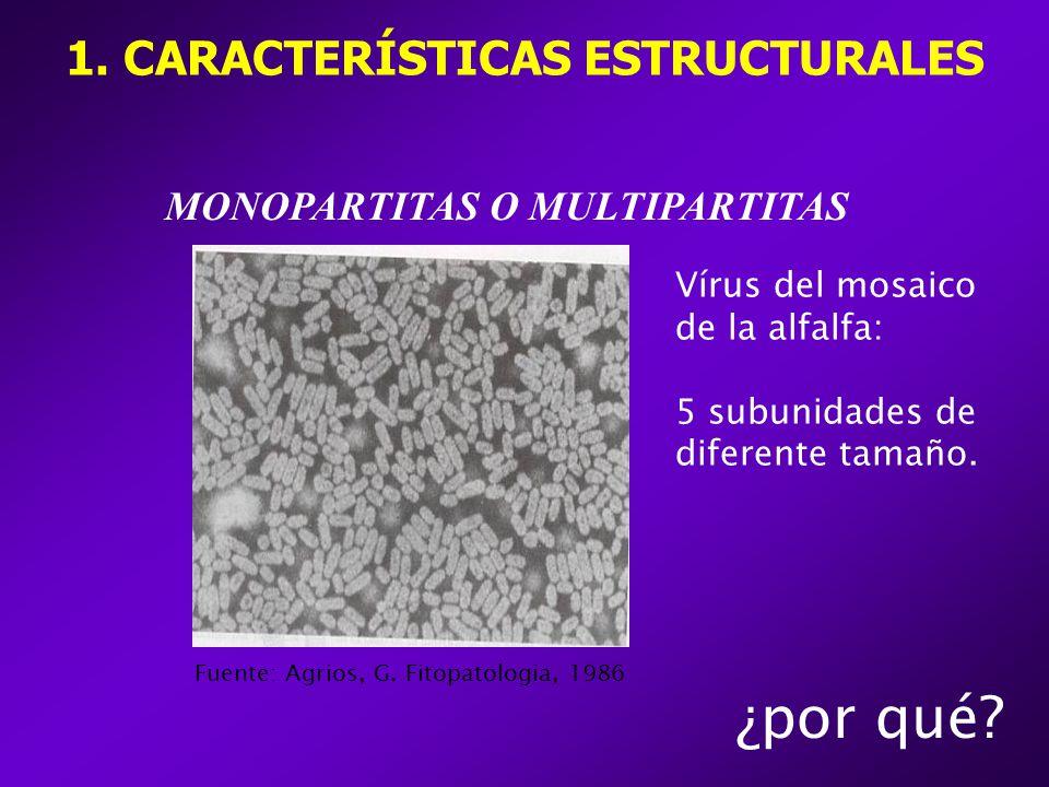 1. CARACTERÍSTICAS ESTRUCTURALES MONOPARTITAS O MULTIPARTITAS