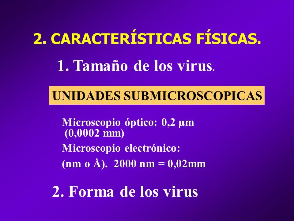2. CARACTERÍSTICAS FÍSICAS.