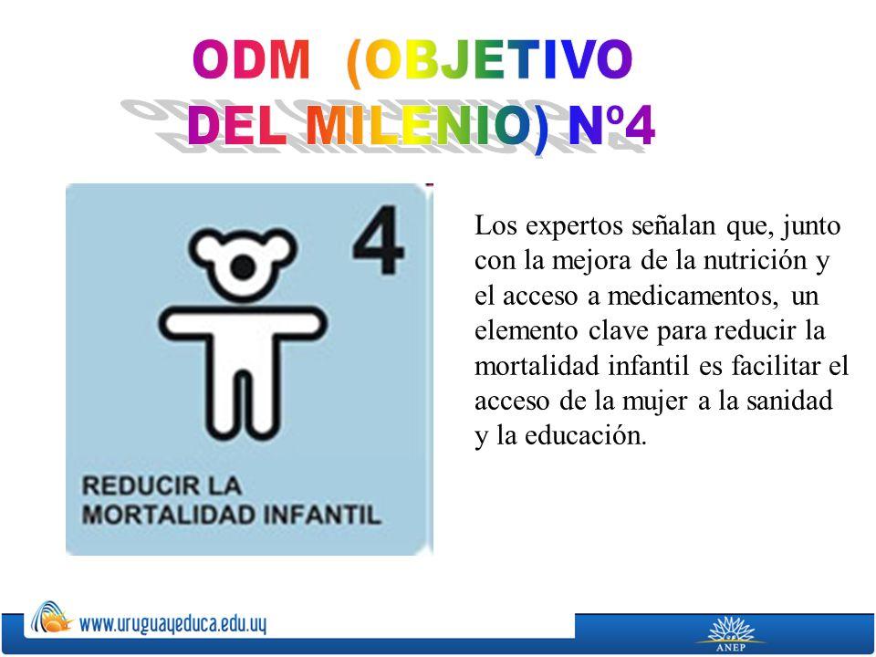 ODM (OBJETIVO DEL MILENIO) Nº4