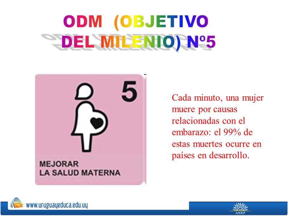 ODM (OBJETIVO DEL MILENIO) Nº5