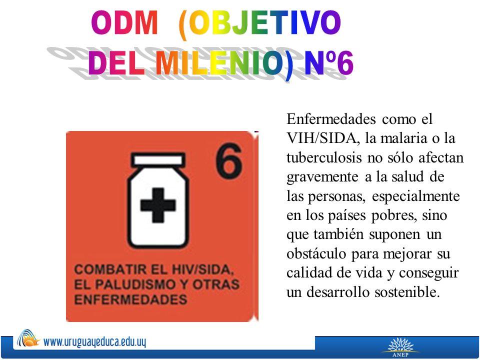 ODM (OBJETIVO DEL MILENIO) Nº6