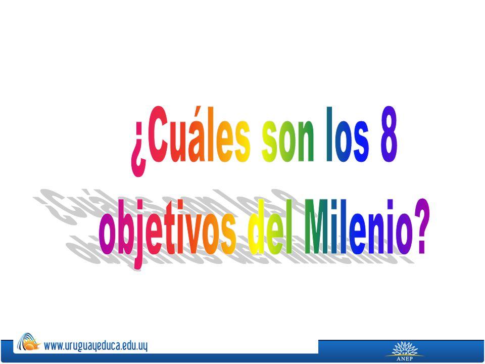 ¿Cuáles son los 8 objetivos del Milenio