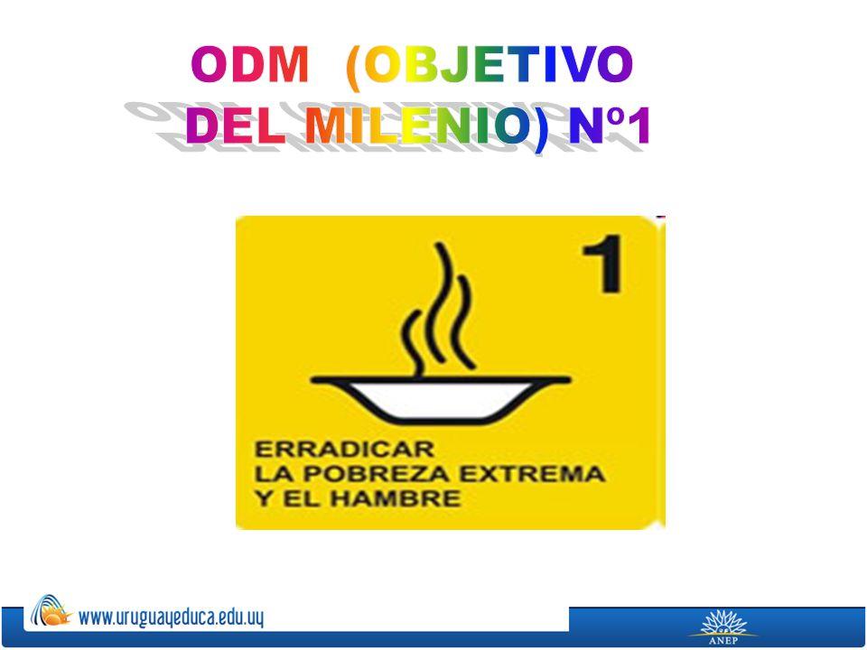 ODM (OBJETIVO DEL MILENIO) Nº1