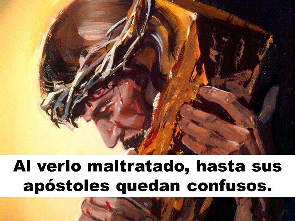 Al verlo maltratado, hasta sus apóstoles quedan confusos.