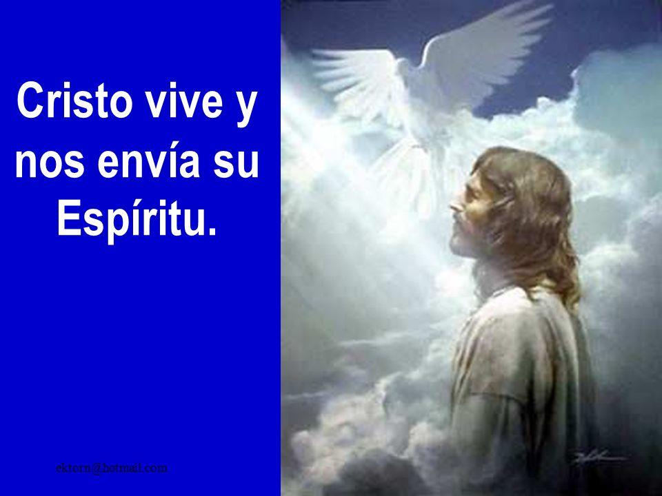 Cristo vive y nos envía su Espíritu.