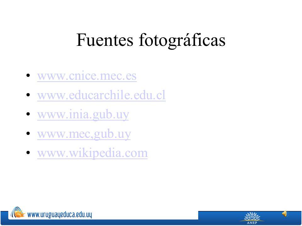 Fuentes fotográficas www.cnice.mec.es www.educarchile.edu.cl