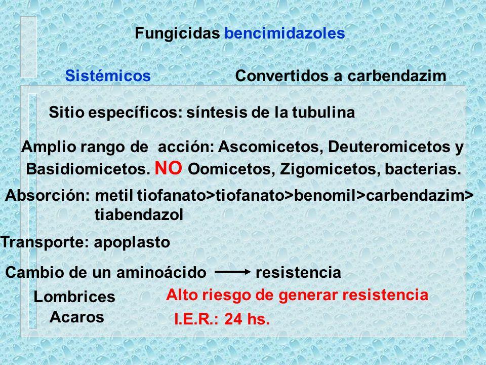 Fungicidas bencimidazoles