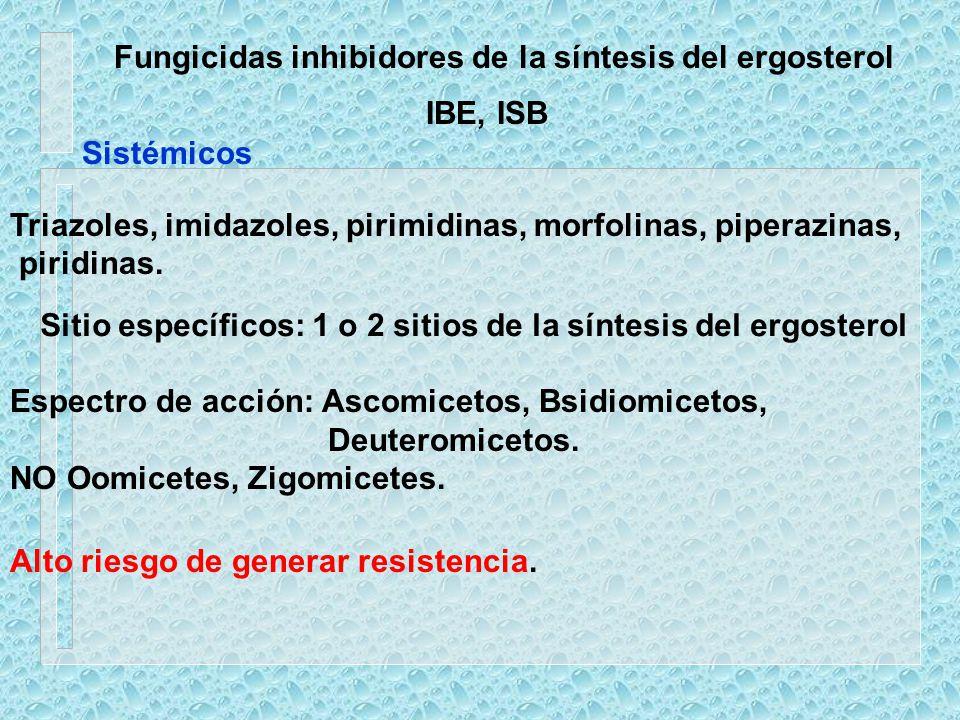 Fungicidas inhibidores de la síntesis del ergosterol
