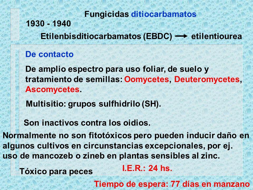 Fungicidas ditiocarbamatos