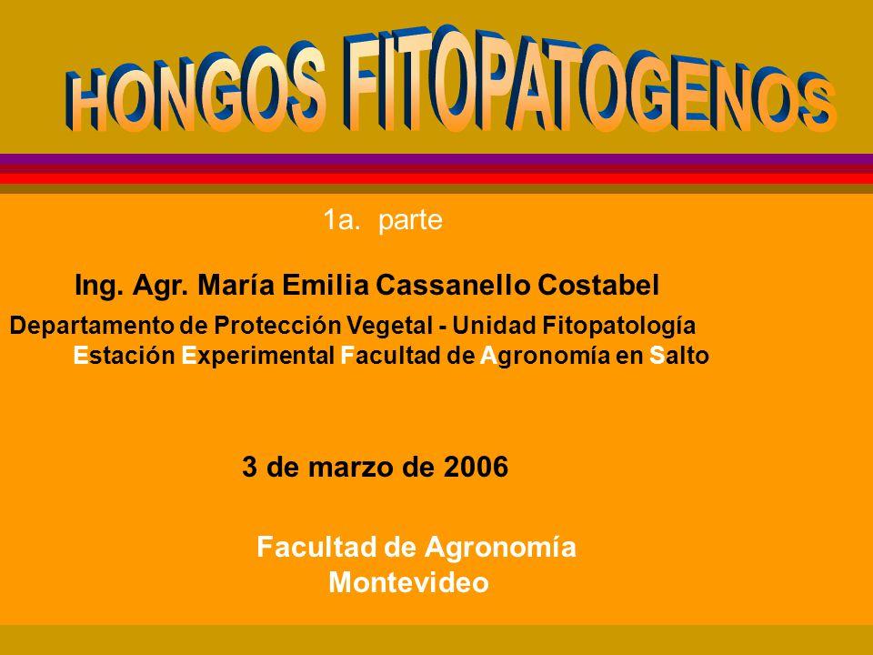 HONGOS FITOPATOGENOS 1a. parte