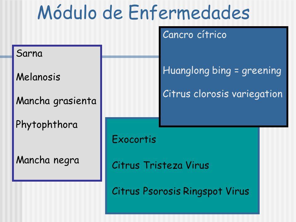Módulo de Enfermedades