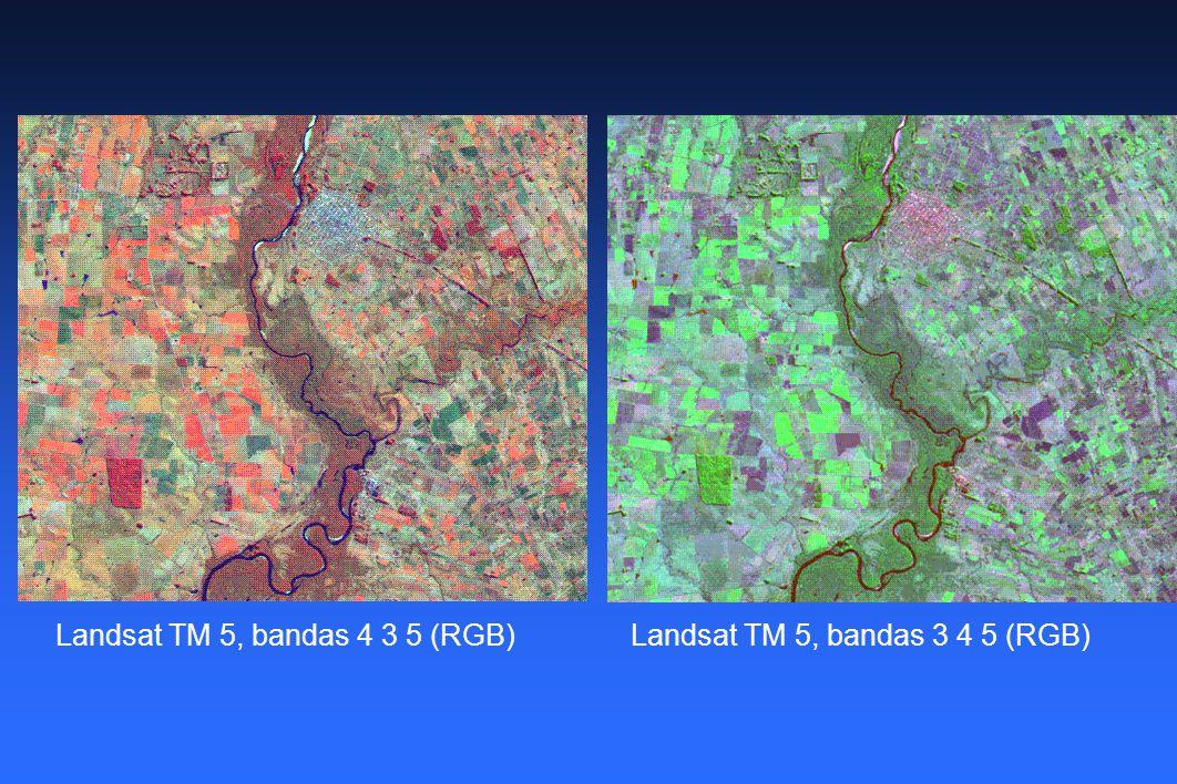 Landsat TM 5, bandas 4 3 5 (RGB)