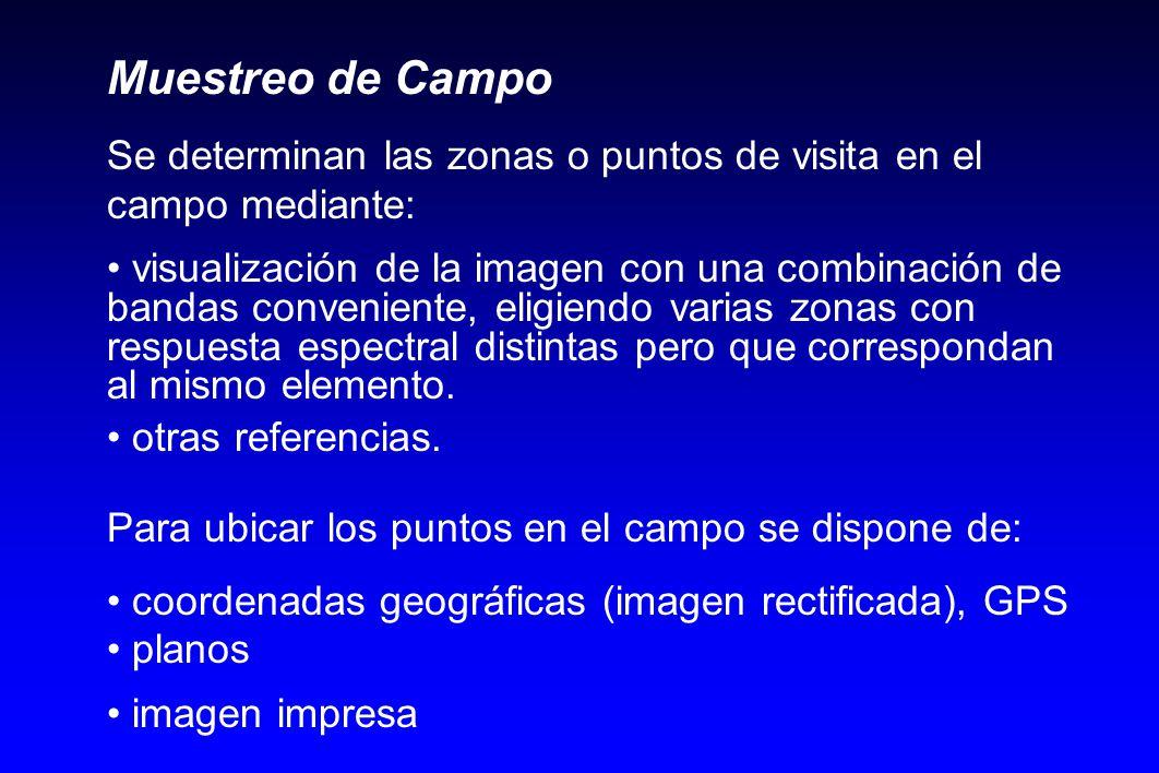 Muestreo de Campo Se determinan las zonas o puntos de visita en el campo mediante: