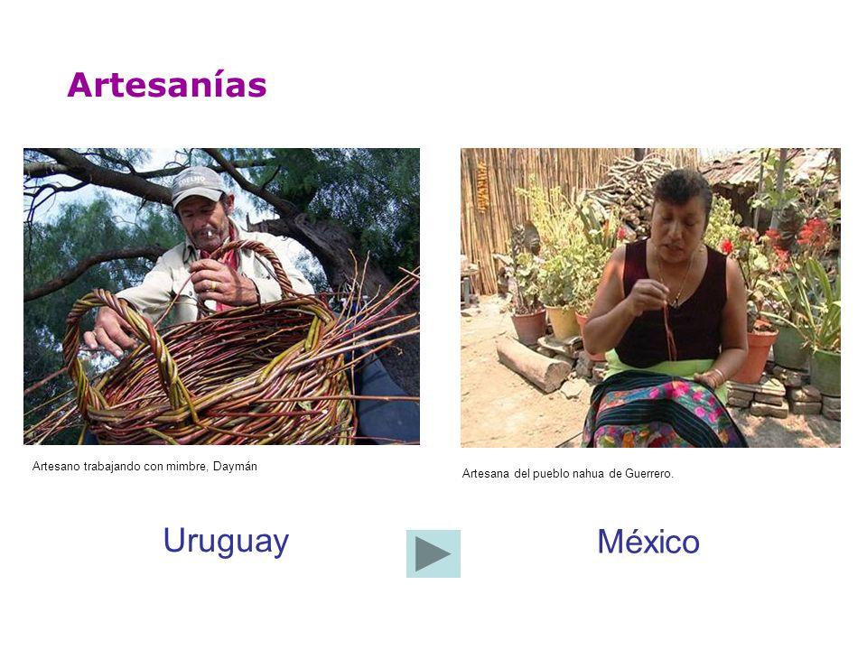 Artesanías Uruguay México Artesano trabajando con mimbre, Daymán