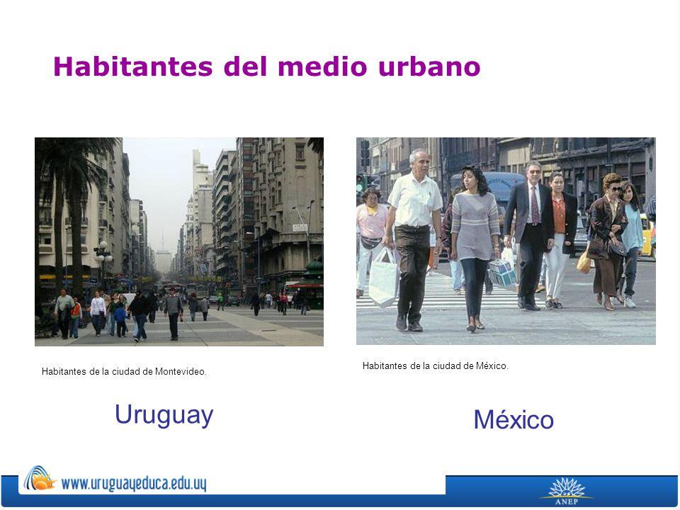 Habitantes del medio urbano