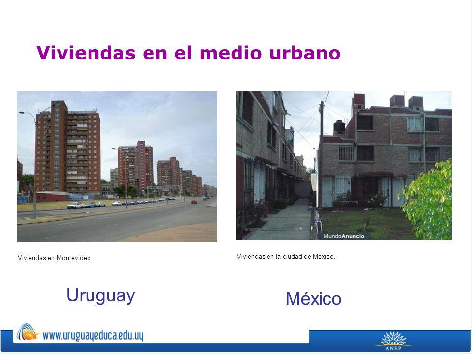 Viviendas en el medio urbano