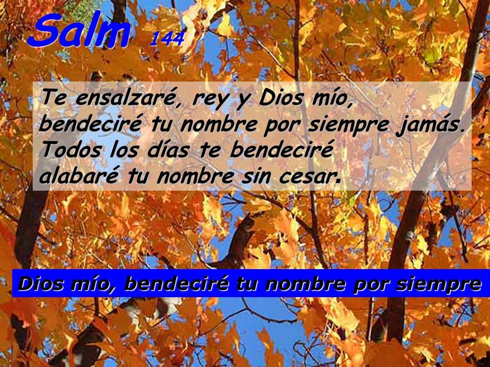 Salm 144 Te ensalzaré, rey y Dios mío, bendeciré tu nombre por siempre jamás. Todos los días te bendeciré alabaré tu nombre sin cesar.