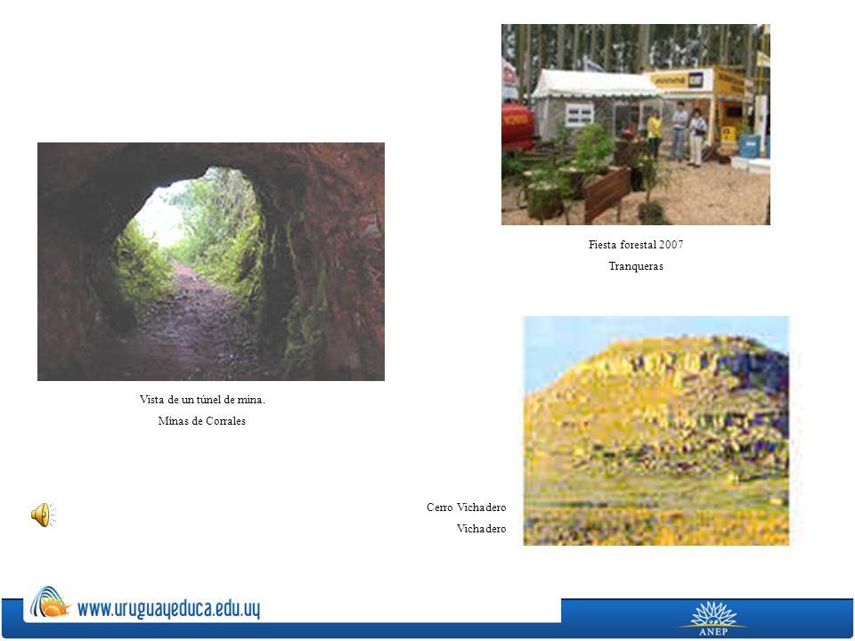 Vista de un túnel de mina.