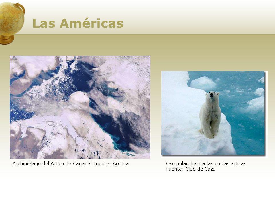 Archipiélago del Ártico de Canadá. Fuente: Arctica