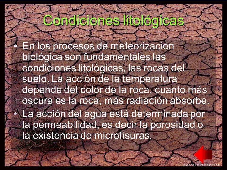 Condiciones litológicas