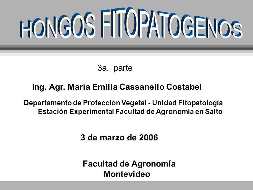 HONGOS FITOPATOGENOS 3a. parte