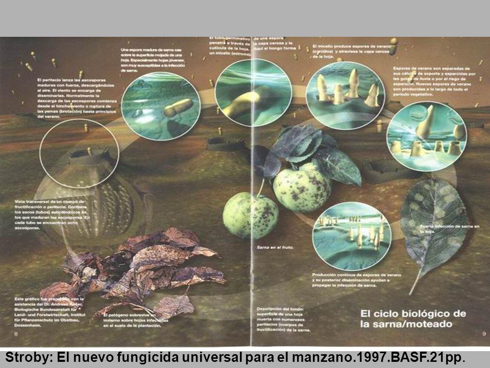 Stroby: El nuevo fungicida universal para el manzano.1997.BASF.21pp.