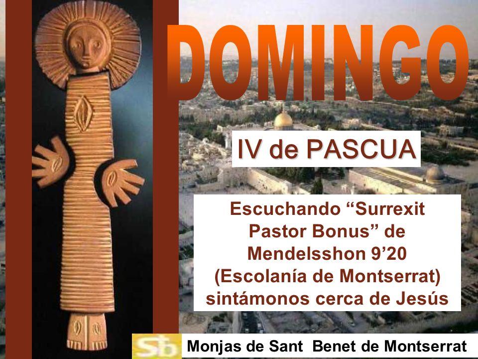 DOMINGO IV de PASCUA. Escuchando Surrexit Pastor Bonus de Mendelsshon 9'20 (Escolanía de Montserrat) sintámonos cerca de Jesús.