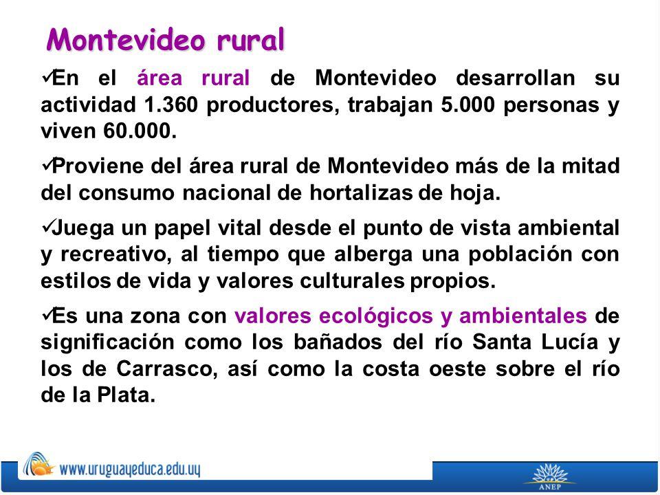 Montevideo rural En el área rural de Montevideo desarrollan su actividad 1.360 productores, trabajan 5.000 personas y viven 60.000.