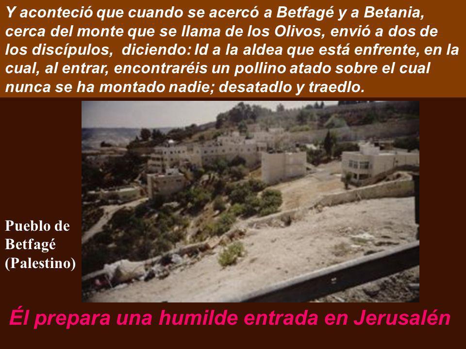 Él prepara una humilde entrada en Jerusalén