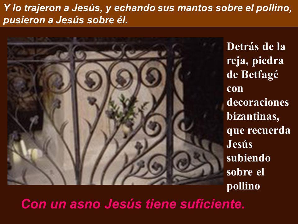 Con un asno Jesús tiene suficiente.