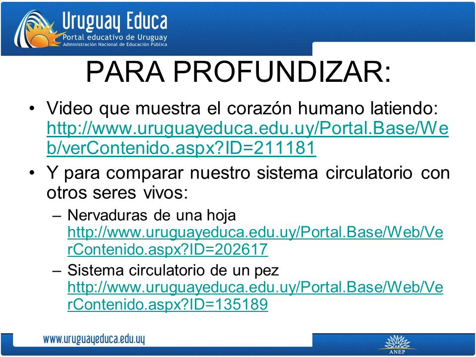 PARA PROFUNDIZAR: Video que muestra el corazón humano latiendo: http://www.uruguayeduca.edu.uy/Portal.Base/Web/verContenido.aspx ID=211181.