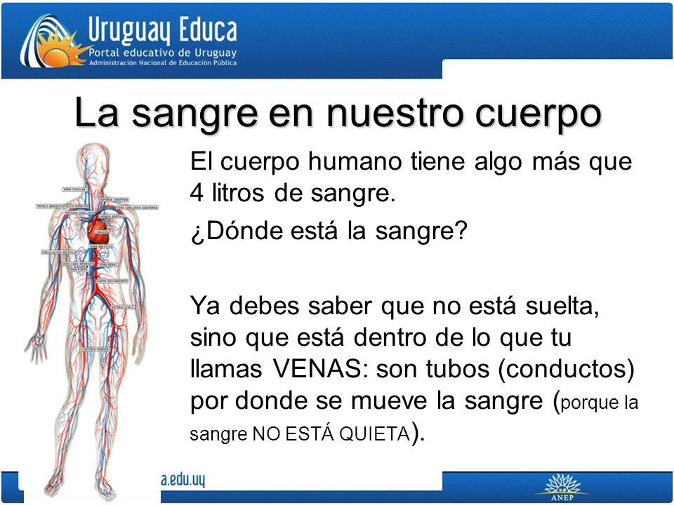 Conocimiento de la Naturaleza Biología Mtra. Andrea Etchartea - ppt ...