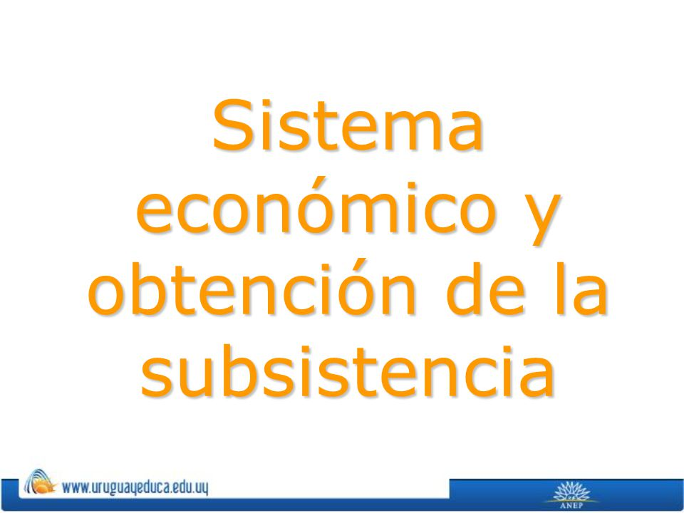 Sistema económico y obtención de la subsistencia