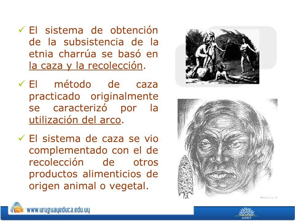 El sistema de obtención de la subsistencia de la etnia charrúa se basó en la caza y la recolección.