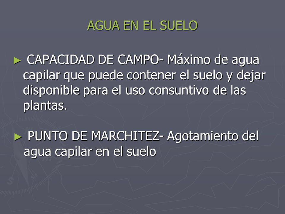 AGUA EN EL SUELO CAPACIDAD DE CAMPO- Máximo de agua capilar que puede contener el suelo y dejar disponible para el uso consuntivo de las plantas.