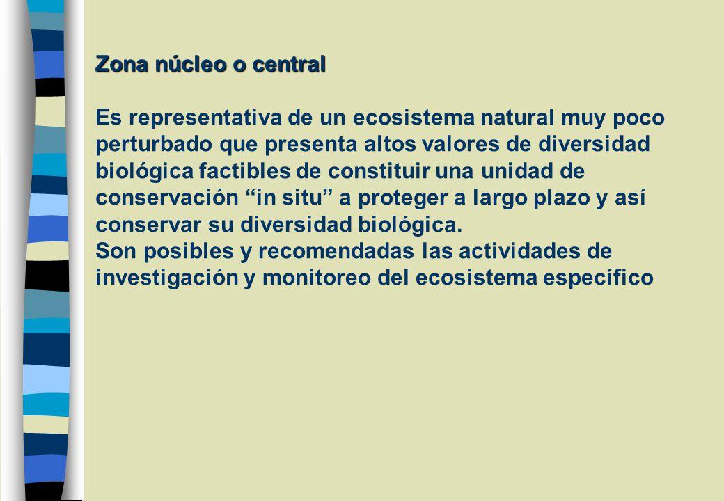Zona núcleo o central Es representativa de un ecosistema natural muy poco perturbado que presenta altos valores de diversidad biológica factibles de constituir una unidad de conservación in situ a proteger a largo plazo y así conservar su diversidad biológica.