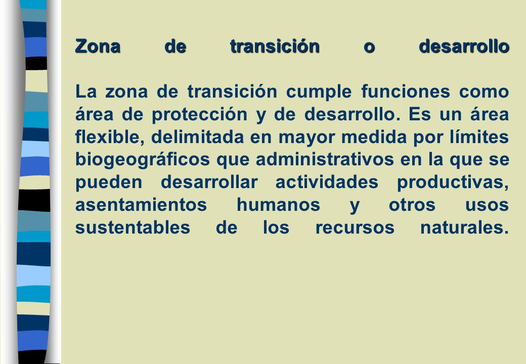 Zona de transición o desarrollo La zona de transición cumple funciones como área de protección y de desarrollo.