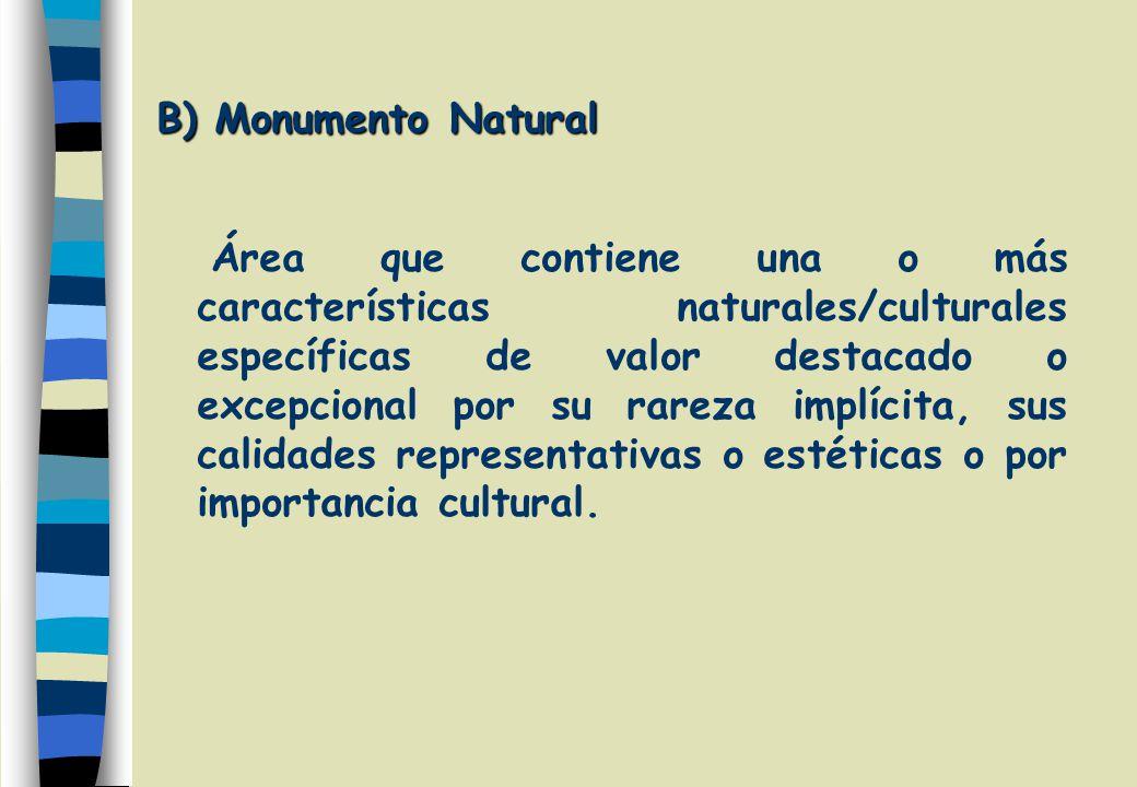 B) Monumento Natural