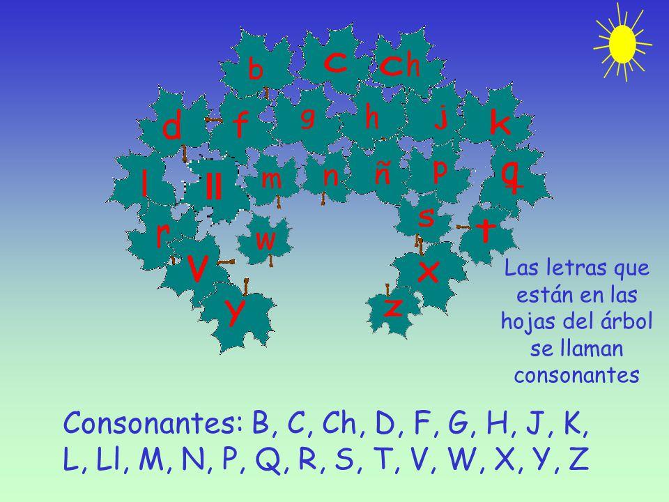 Las letras que están en las hojas del árbol se llaman consonantes