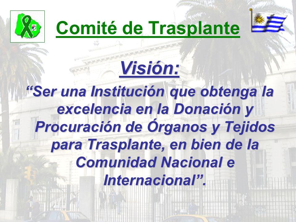 Comité de Trasplante Visión: